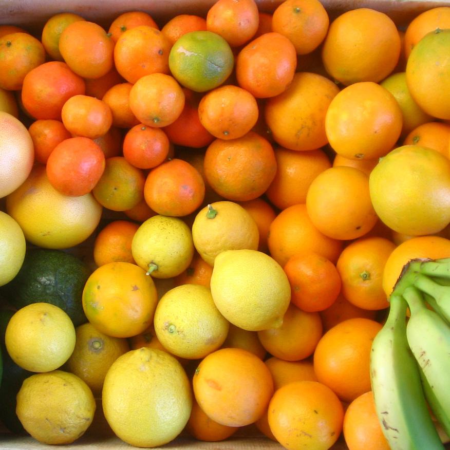 panier-de-fruits-agrumes-2