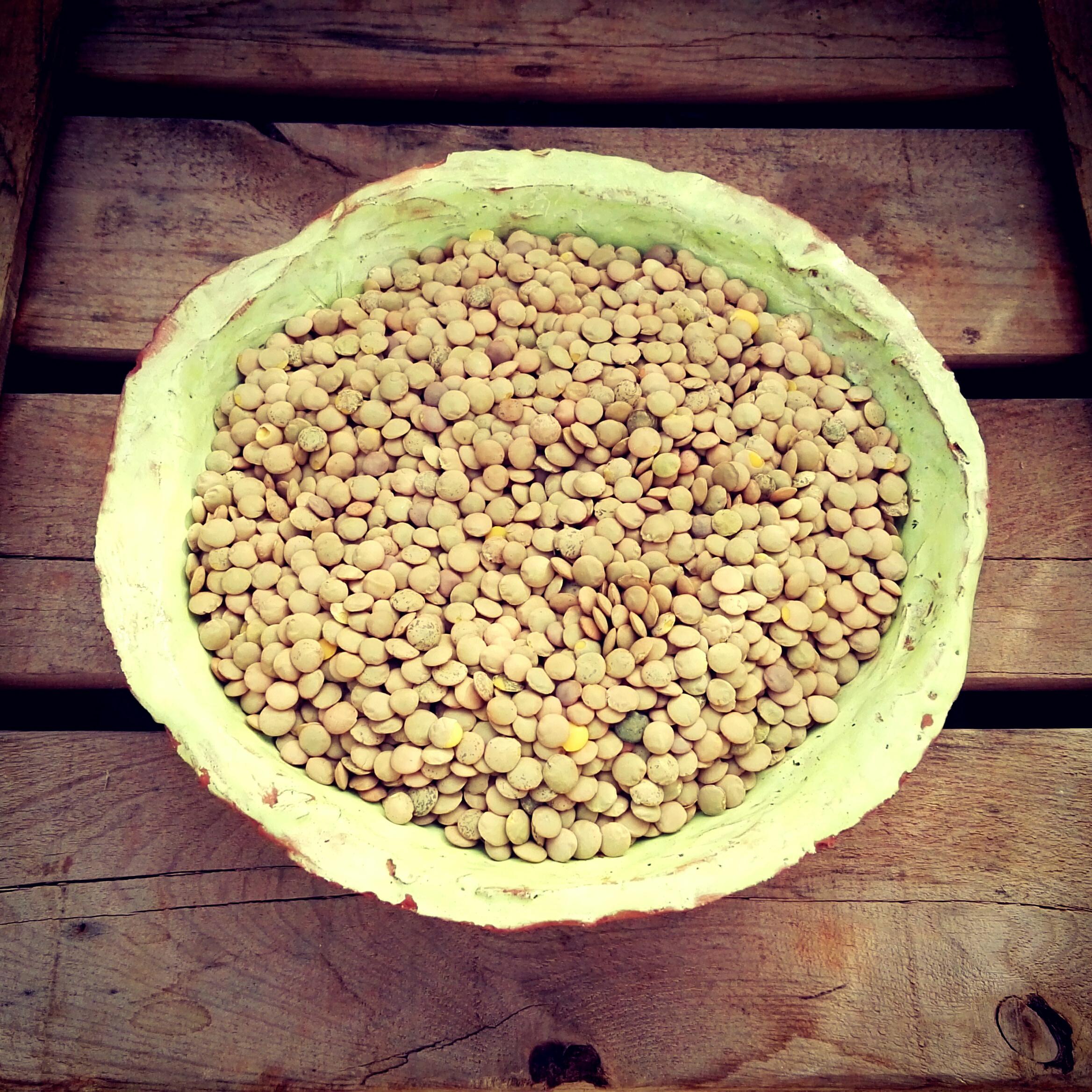 lentilles-castillane-4e-kg