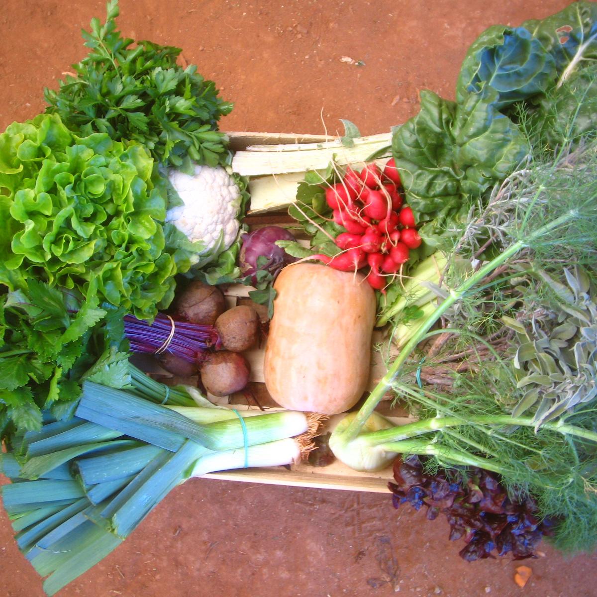 panier-legume