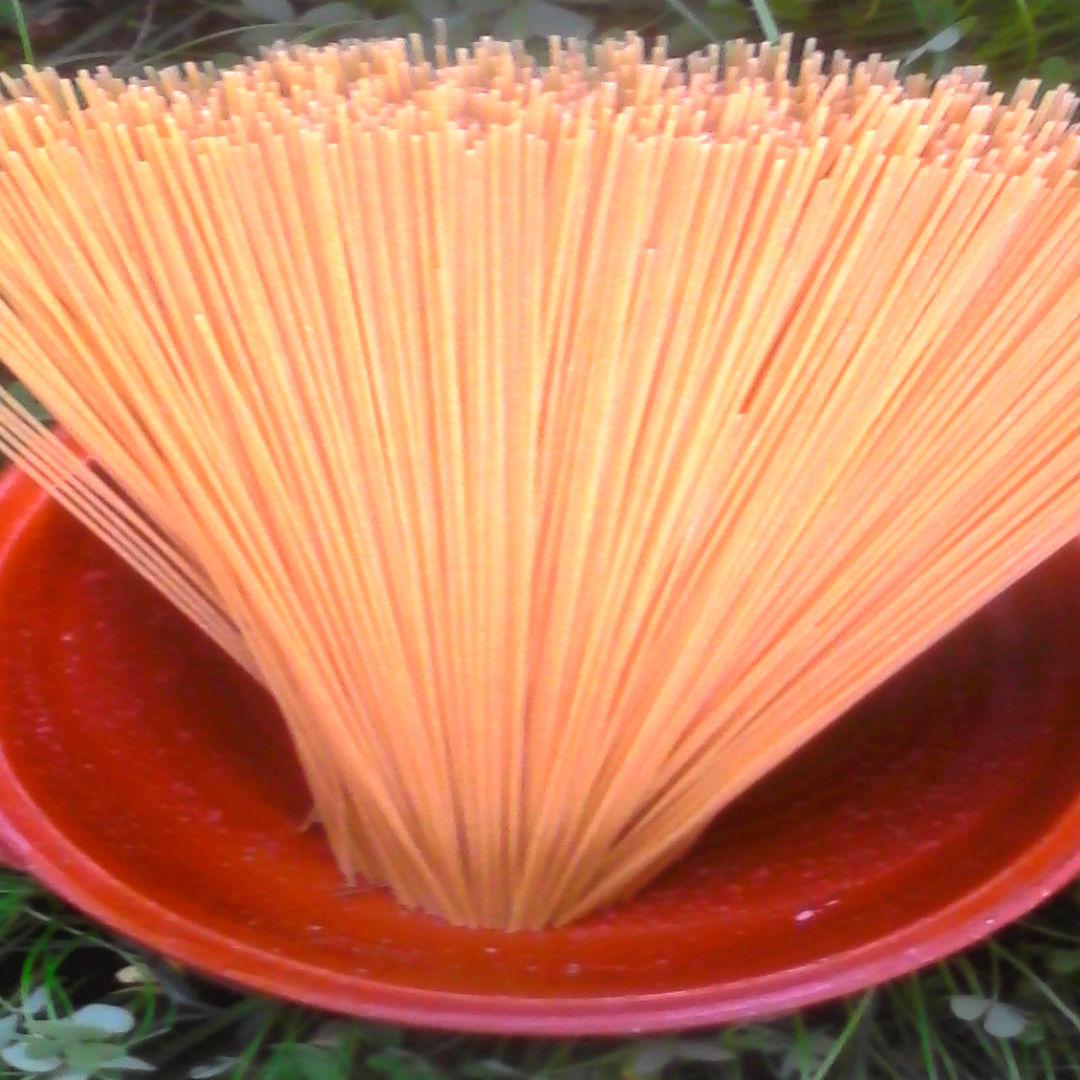 sapguetti